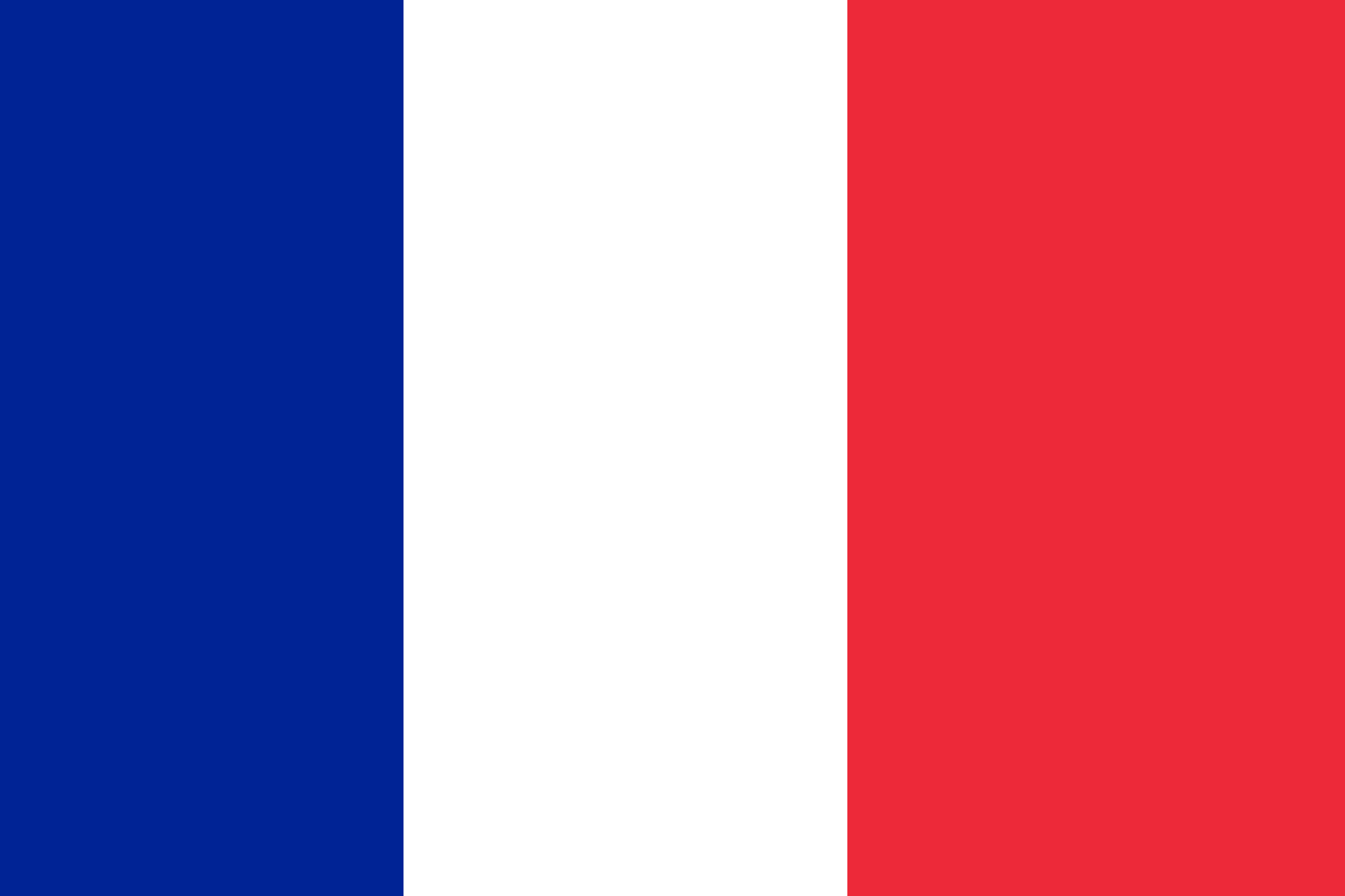 French Flag 5' x 3'