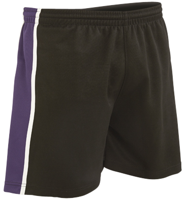 Bryn Celynog Comprehensive *GCSE* Shorts