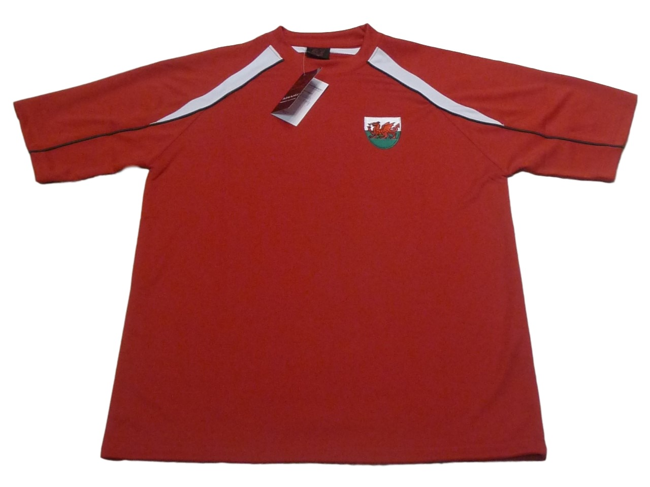 Euros Kids Welsh Panel Cooldry Football T-Shirt