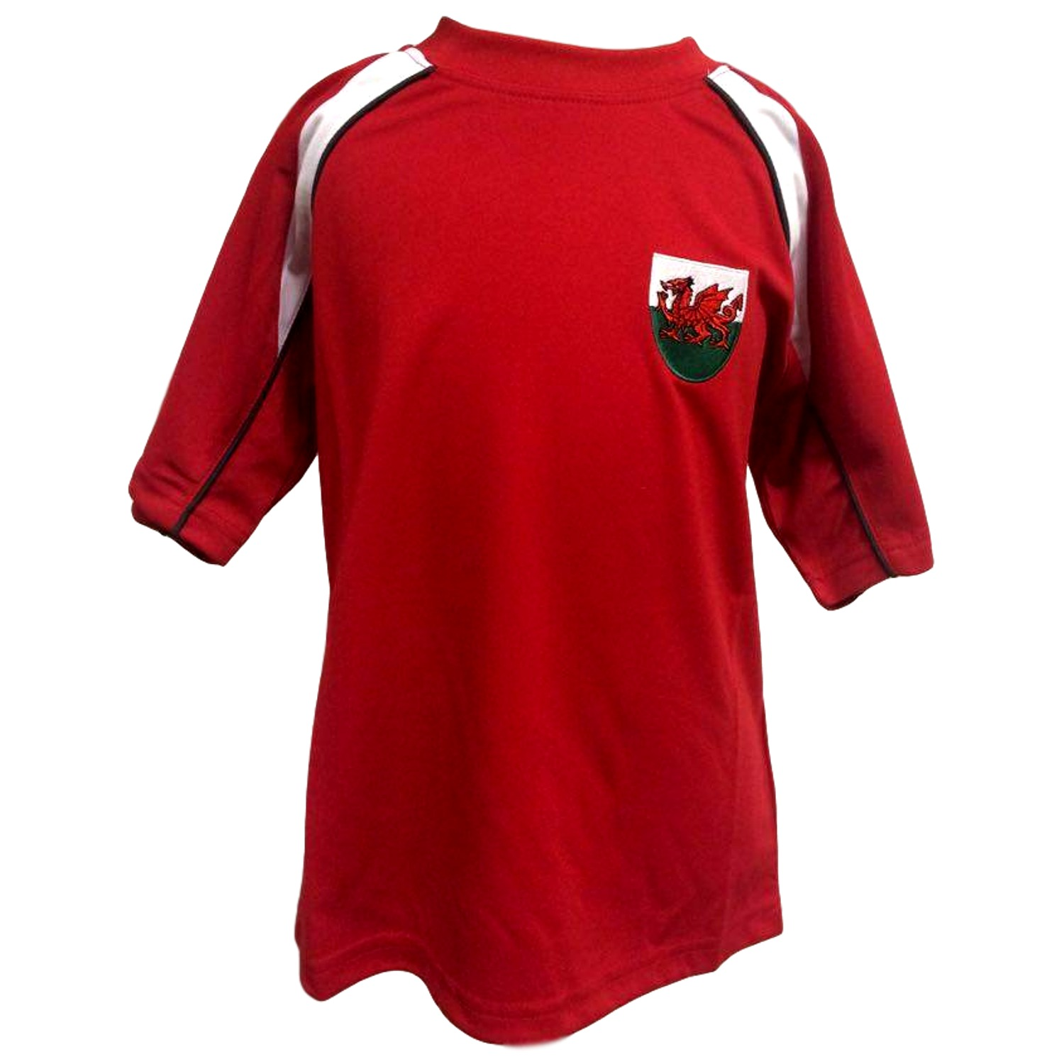 Euros Welsh Panel Cooldry Football T-Shirt