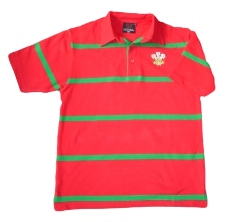 Kids New Yarn Polo Shirt