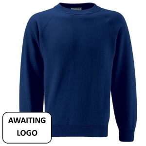 Ty Coch *SECONDARY* Navy Jumper