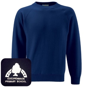 Coedpenmaen County Primary Navy Jumper