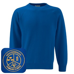 Gwaunmeisgyn Primary Blue Jumper