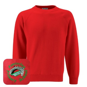 Pontyclun Primary Red Jumper