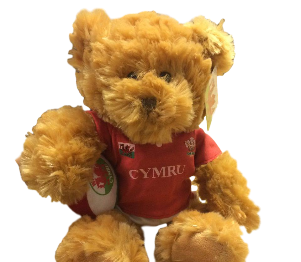 Souvenir Teddy with Rugby Ball