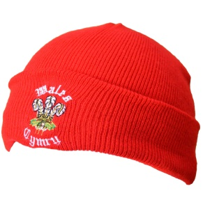 Kids Welsh Ski Hat