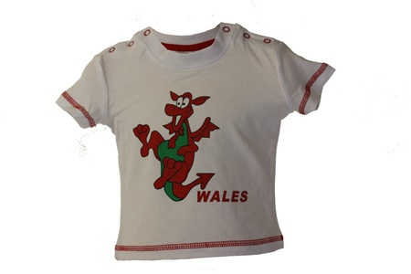 Baby Dancing Dragon T-Shirts