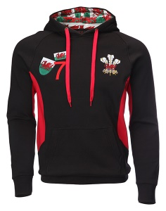Childrens Applique Welsh Hoodie