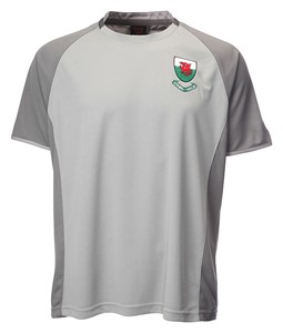 Kids Welsh 'Ramsey' Grey Football T-Shirt