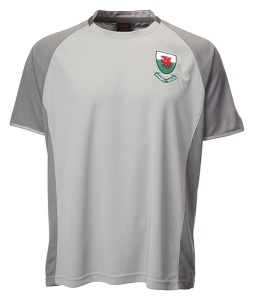 Kids Welsh Cooldry Grey Football Shirt