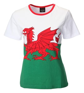 Ladies Welsh Flag Skinni Fit T-Shirt