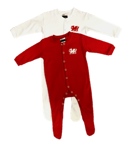 Baby Welsh Dragon Sleepsuits