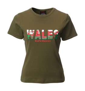 Ladies 3D Wales Printed Skinni Fit T-Shirt