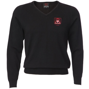 Cardinal Newman Boys V-Neck Jumper