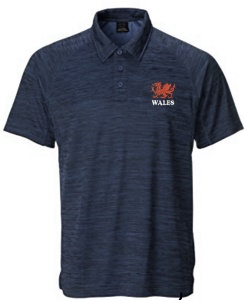 Lewis Antique Navy Polo Shirt