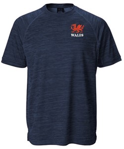 Lewis Antique Navy T Shirt