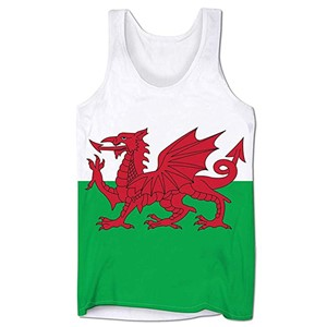 Welsh Flag Unisex Vest
